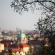 Stock Photo: Prague