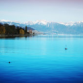 Lake geneva — Stock Photo