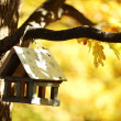 Royalty-Free Stock Photo: Birdhouse in the autumn forest