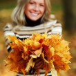 Woman portret in autumn leaf — Stock Photo #6933988