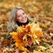 Woman portret in autumn leaf — Stock Photo #6934396