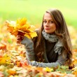 Woman portret in autumn leaf — Stock Photo #6934433