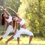 Yoga — Stock Photo #6935070