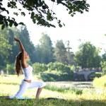 Yoga — Stock Photo #6935178