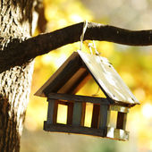 Birdhouse in the autumn forest — Stock fotografie