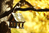 Birdhouse in the autumn forest — Стоковое фото