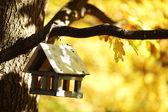 Birdhouse w lesie jesienią — Zdjęcie stockowe