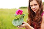 цветок — Стоковое фото
