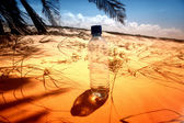 Desert water — Stock Photo