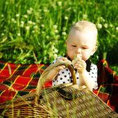 Boy on picnic — Stok fotoğraf