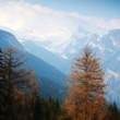Stock Photo: Spring alps
