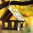 Birdhouse in the autumn forest - Foto Stock