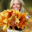 Woman portret in autumn leaf — Stock Photo #7192601