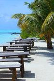 кафе tropical — Стоковое фото