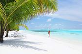 Woman in bikini under palm — Stock Photo