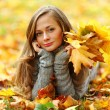 Woman portret in autumn leaf — Stock Photo #7294460