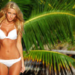 Woman in a bikini - Stockfoto