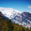Spring alps — Stock Photo