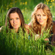 Women grass fun — Stock fotografie
