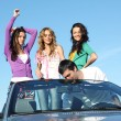 Friends in car — Foto de Stock