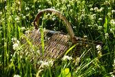 Cesta de picnic — Foto de Stock