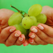 Grape in woman hands — Stock Photo #7534662