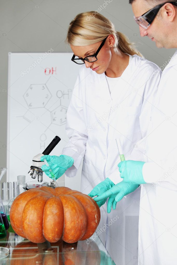 Scientist conducting genetic experiment with pumpkin — Stock Photo #7600834