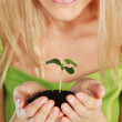Plant in blonde hands — Stock Photo #7621230