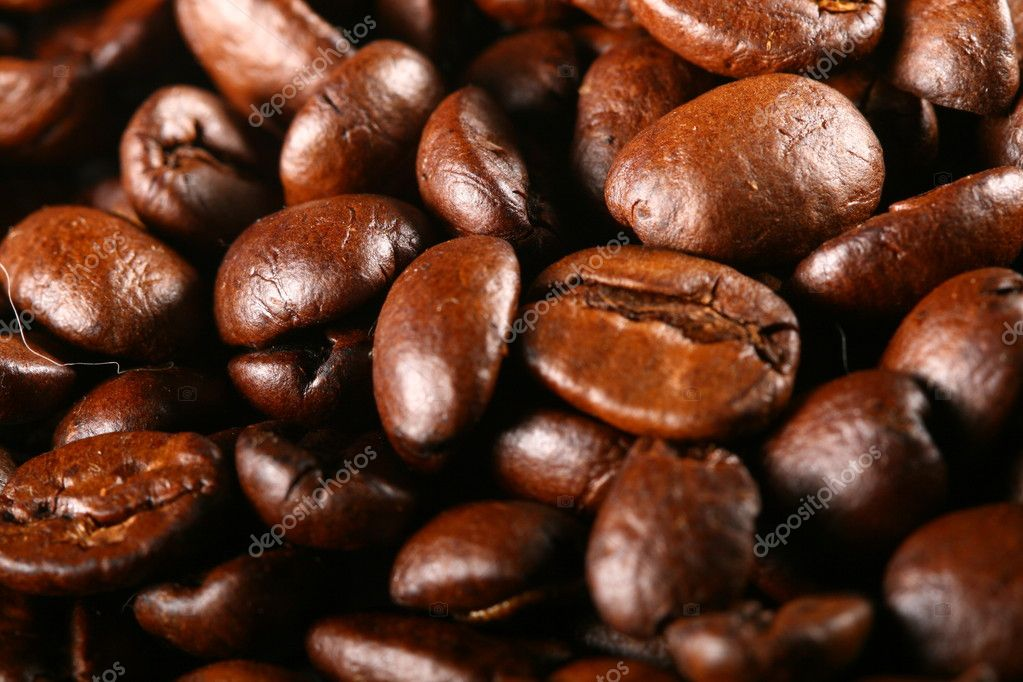 Coffee beans detailed macro close up  Stock Photo #7684408