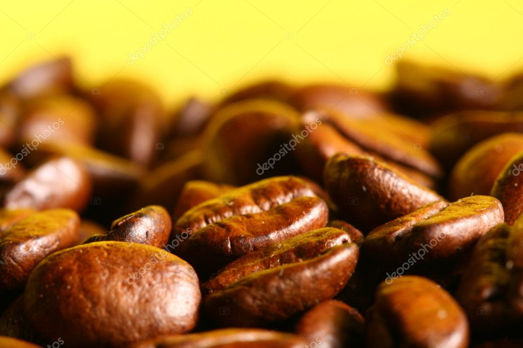 Coffee beans detailed macro close up  Stock Photo #7684417