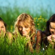 Girlfriends on grass — Stock Photo