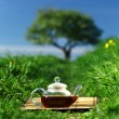 Natural tea — Stock Photo