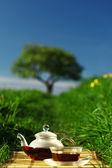 Chá natural — Fotografia Stock