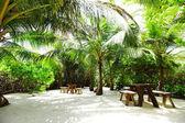 熱帯カフェ — ストック写真