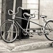 Two seater bike — Stock Photo #6850268