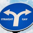 Straight and Gay sign - Stock Photo