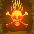 Illustration of the skull in flames — Stock vektor