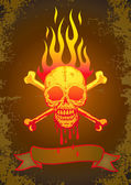 Illustration of the skull in flames — Stock Vector
