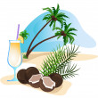 Cocktail and Coconut — Stock Vector