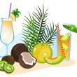 Stock Vector: Cocktails and Fruits