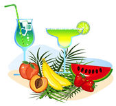 Cocktails and Fruits — Stock Vector