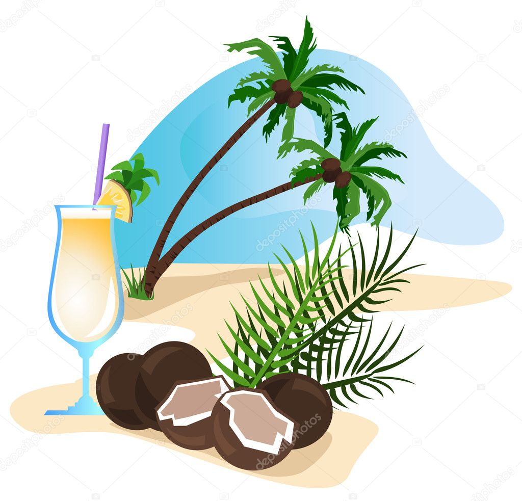 Exotic drink and coconut isolated on white background — Stock Vector #6771275