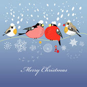 Christmas greeting card with birds — Stock Vector