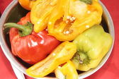 Red, yellow, orange peppers on a plate — Stock Photo