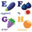Alphabet letters E-H with fruits. - Stock Vector