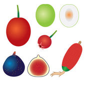 Conjunto de frutas exóticas. — Vetorial Stock