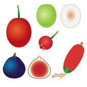 Zbiór owoców egzotycznych. — Wektor stockowy