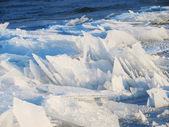 Ice floes — Stock Photo