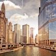 Chicago skyline  — Stock fotografie