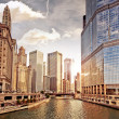 Stock Photo: Chicago skyline
